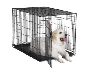 Best Dog Crate for Great Danes