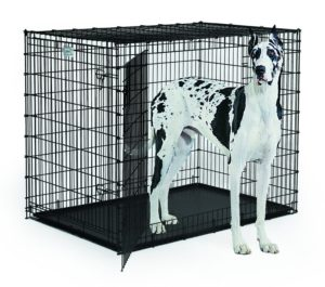 Best Dog Crate For Great Dane