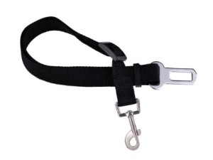 different types of dog leashes