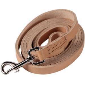 best dog leash for pulling