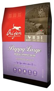 Orijen Puppy Food For Large Breeds