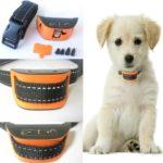 New Classic Design - No Bark Dog Collar