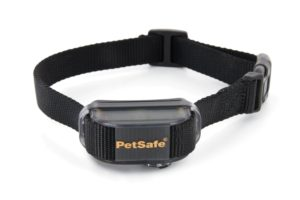 Bark Collar For Chihuahua