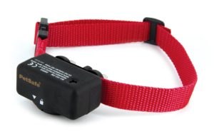 Shock Collars For Beagles