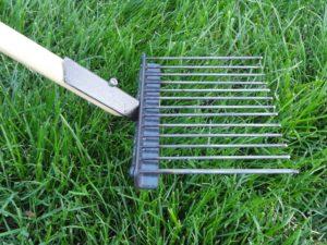 Pooper Scooper For Grass