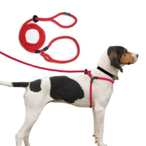 Harness Lead For Dogs