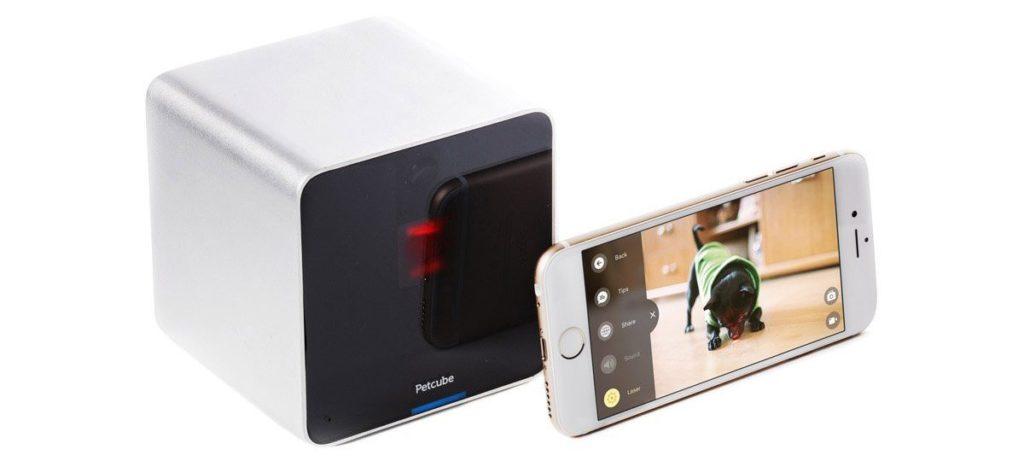 Petcube Interactive Wi-Fi Pet Camera Review