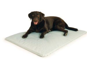 Cool Dog Beds For Large Dogs