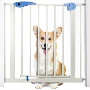 Best puppy gate