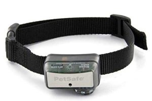 Best Shock Collar For Pitbulls
