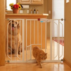 Best Swinging puppy gate