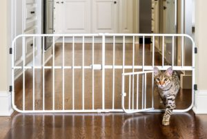 small dog gate