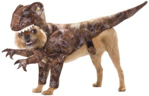 Halloween Costume For Large Dogs  sc 1 st  Dog N Treats & Halloween Costumes For Dogs - Dog N Treats