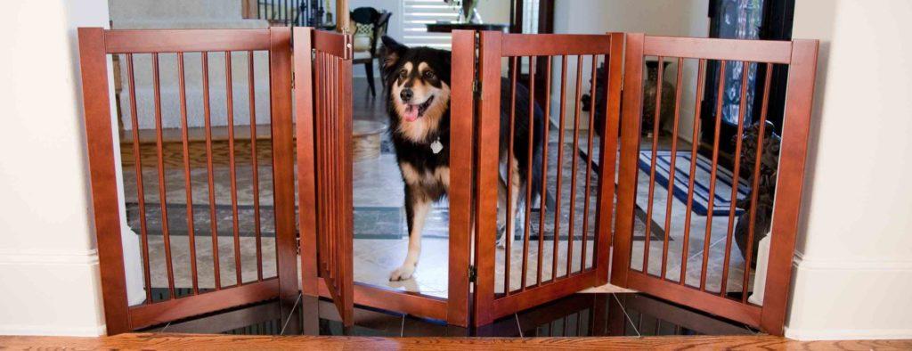 Puppy Dog Gate
