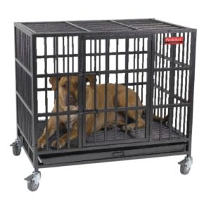Best Dog Crate For Rottweiler
