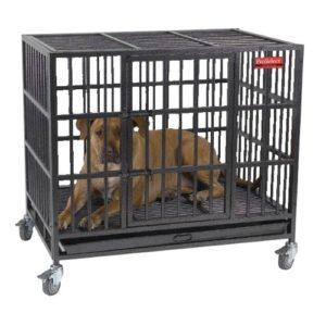 Heavy Duty Dog Crates For Pitbulls