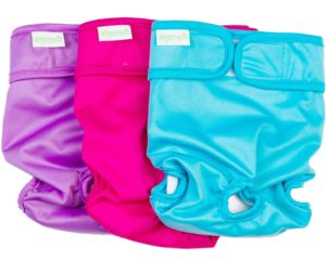 Reusable Dog Diapers For Females In Heat