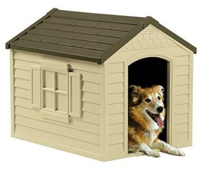 Best Dog House For Husky
