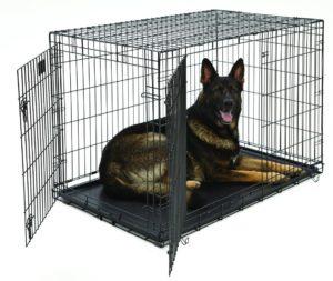 Best Dog Crate For Husky