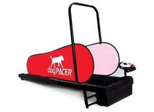 Best Treadmill For Pitbulls
