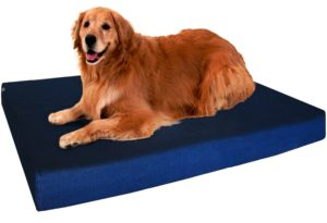 Washable Orthopedic Dog Bed Review