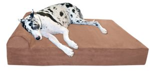 Best Pitbull Dog Bed