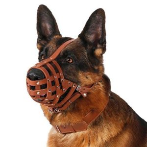 Dog Muzzle For German Shepherd