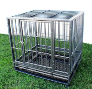 Best Dog Cage For Outside