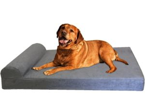 Extra Large Dog Bed Reviews