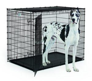 biggest dog crate