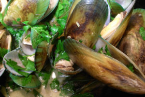 Green lipped mussel for dog