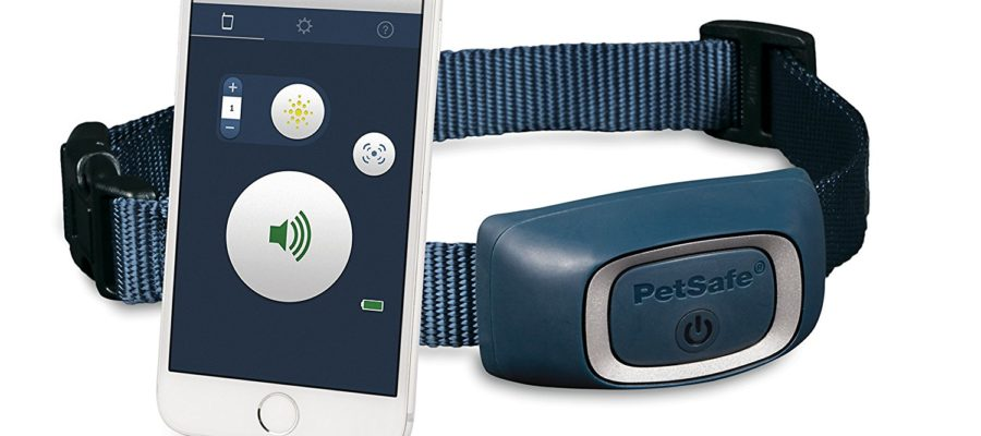 PetSafe SMART DOG Bluetooth Training Collar Review