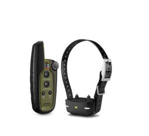 Best training collar for labrador retriever