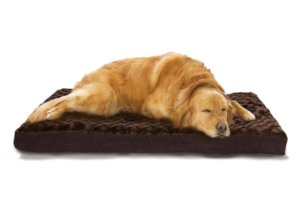 dog bed for Irish Wolfhound