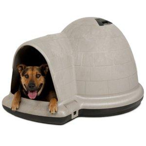 Samoyed Dog Crates Dog House