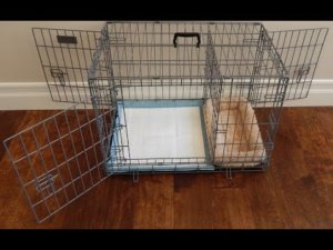 Puppy Apartment Reviews
